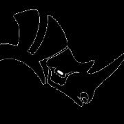 آموزش جامع راینو در سایت هرمیس 3D